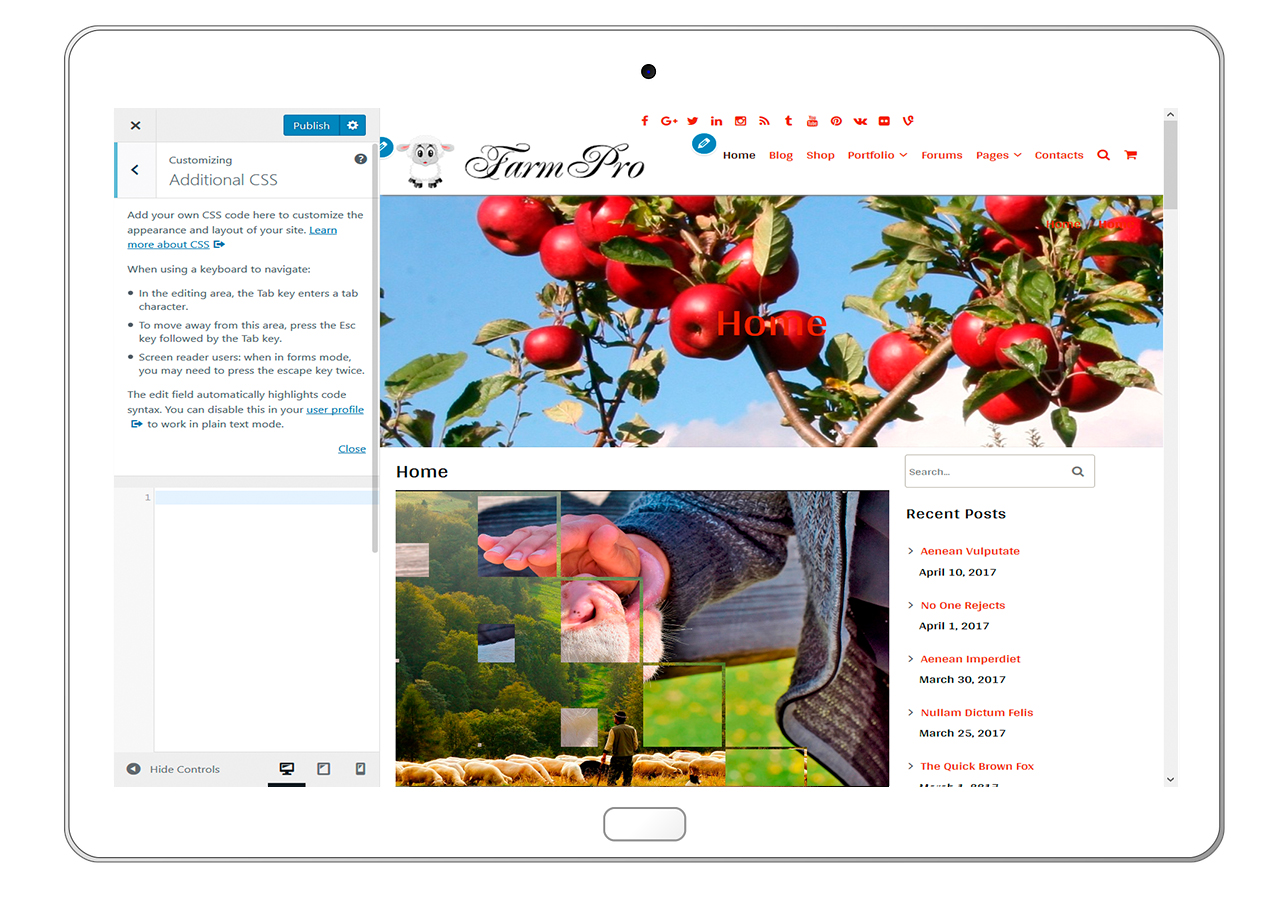 FarmPro-customizing-additional-css