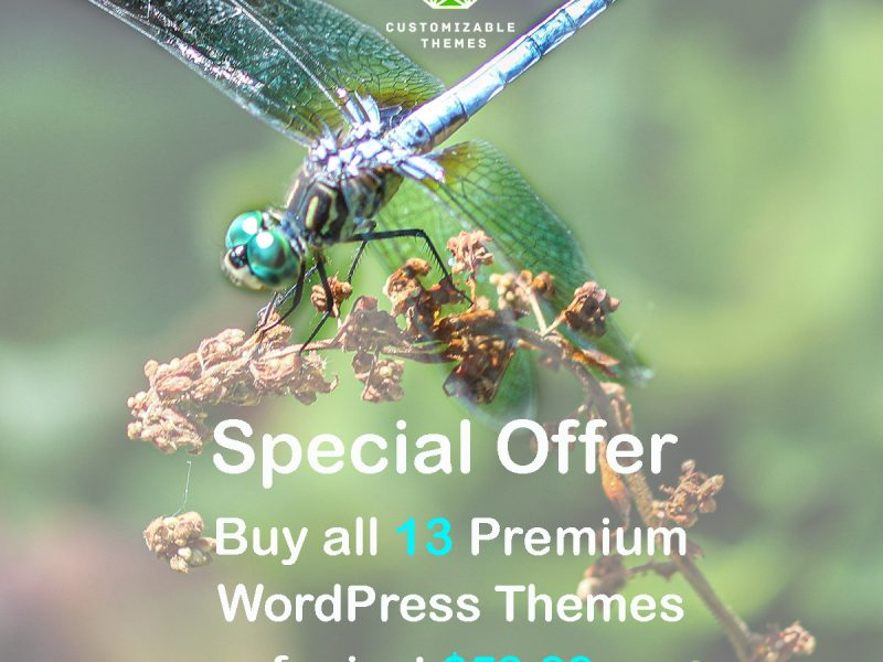 Special-offer-all-themes-customizable-themes